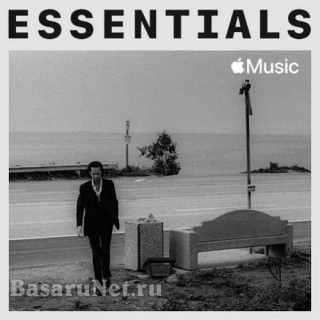 Nick Cave & The Bad Seeds - Essentials (2021)