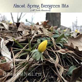 Almost Spring Evergreen Hits (All Tracks Remastered) (2021)