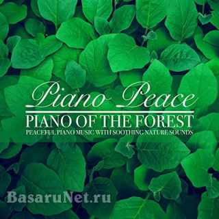 Piano Peace - Piano of the Forest (2021) FLAC
