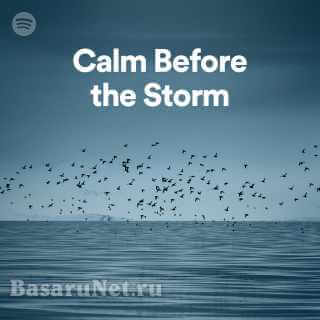 Calm Before the Storm (2021)